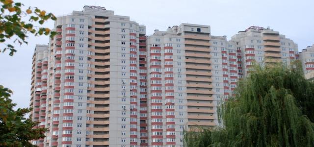 «Mayorova»